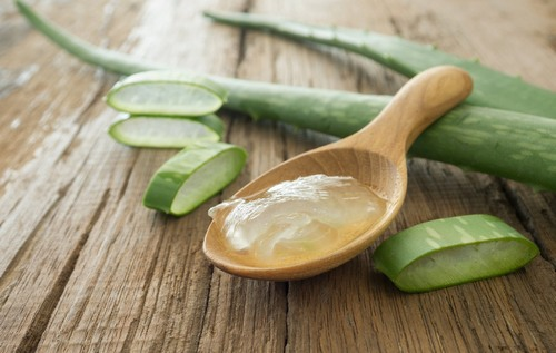 Lá nha đam bạn mua về, bóc tách lấy phần gel trong và thoa lên vùng da bị viêm nang lông.