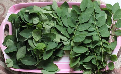Cách làm mặt nạ dưỡng da từ các loại rau trong vườn 2